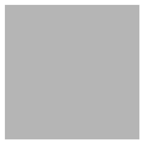 imagem avatar padrão para comentários